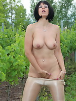 Sexy looking Pantyhose Diva posing in a vineyard