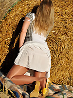 Pantyhose Legs in the Setting Sun